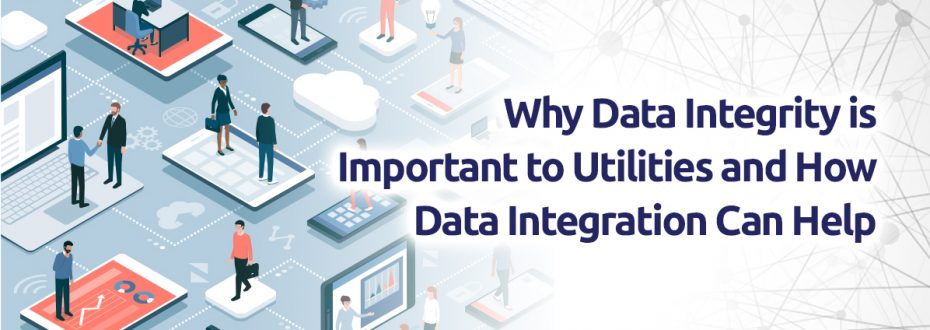 Enterprise Data Integrity
